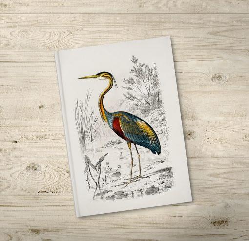Bird Illustration Notebook Journals